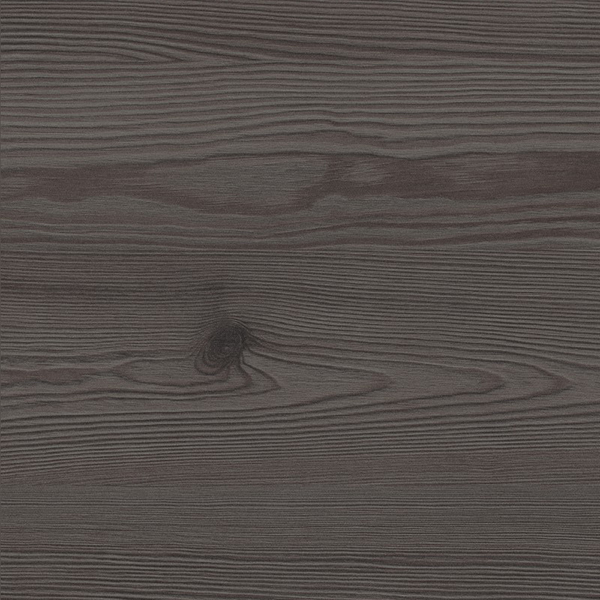 H 3406 ST38 Anthracite Mountain Larch